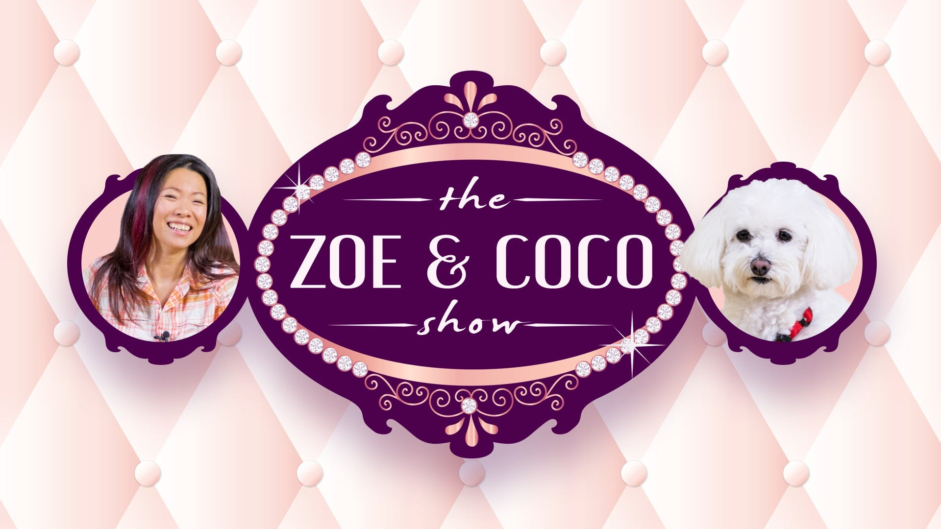 The Zoe and Coco Show Artwork