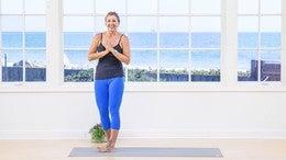 yoga show  anatomy for yogis  yoga anytime