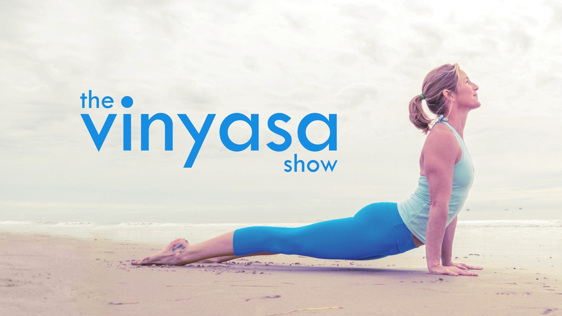 The Vinyasa Show Artwork