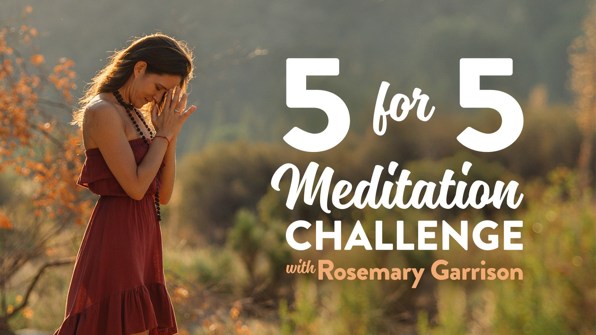 5-Day Meditation Challenge Artwork